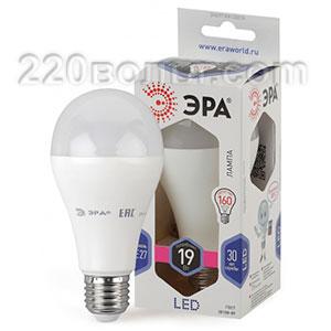 Лампа светодиодная ЭРА LED A65-19W-860-E27 (диод, груша, 19Вт, хол, E27)