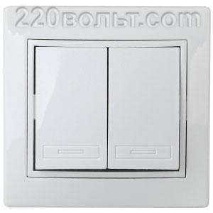 Intro Plano Выключатель двойной 10А-250В, IP20, СУ, белый 1-104-01
