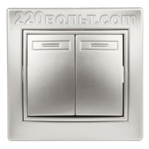 Intro Plano Выключатель двойной 10А-250В, IP20, СУ, алюминий 1-104-03