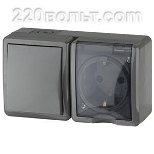 Блок розетка+выключатель IP54, 16A(10AX)-250В, ОУ, Эра Эксперт, серый 11-7401-03 ЭРА герм