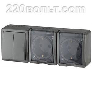 Блок две розетки+выключатель двойной IP54, 16A(10AX)-250В, ОУ, Эра Эксперт,серый 11-7404-03 ЭРА герм