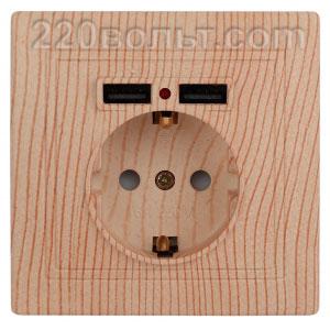 Intro Plano Розетка+USB, IP20, СУ, сосна 1-410-11