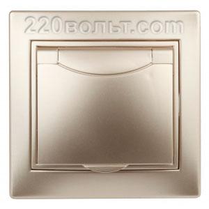 Intro Plano Розетка 2P+E Schuko, 16A-250В (керам.+ поджим) с крышкой, IP20, СУ, шампань 1-203-04