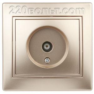 Intro Plano Розетка TV одиночная, IP20, СУ, шампань 1-301-04