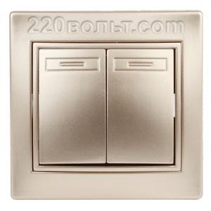 Intro Plano Выключатель двойной 10А-250В, IP20, СУ, шампань 1-104-04
