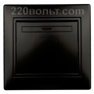 Intro Plano Выключатель 10А-250В, IP20, СУ, антрацит 1-101-05