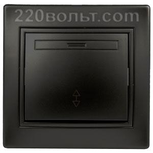 Intro Plano Переключатель 10А-250В, IP20, СУ, антрацит 1-103-05