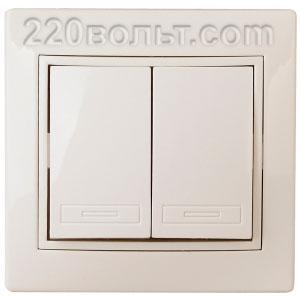 Intro Plano Выключатель двойной 10А-250В, IP20, СУ, сл. кость 1-104-02
