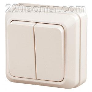 Intro Quadro Выключатель двойной 10А-250В, IP20, ОУ, сл. кость 2-104-02 (открытая установка)