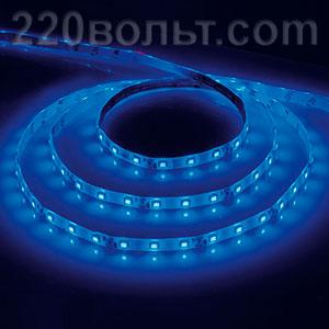 Лента LED LS604 IP-65 синяя Feron